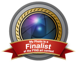 Photo_Finalist_Badge